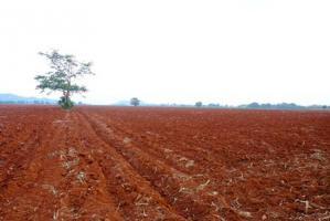 ที่ดิน 18,000,000 ลพบุรี พัฒนานิคม ช่องสาริกา