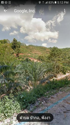 ที่ดิน สอบถามราคา โทร.0848409509 พังงา เมืองพังงา ป่ากอ