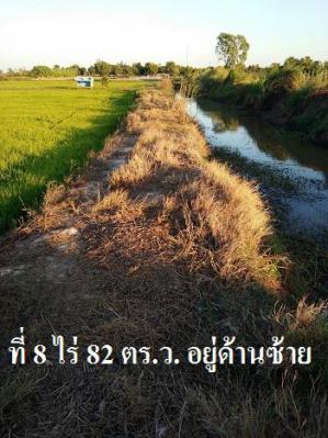 ไร่นา 2871750  ชลบุรี พนัสนิคม สระสี่เหลี่ยม