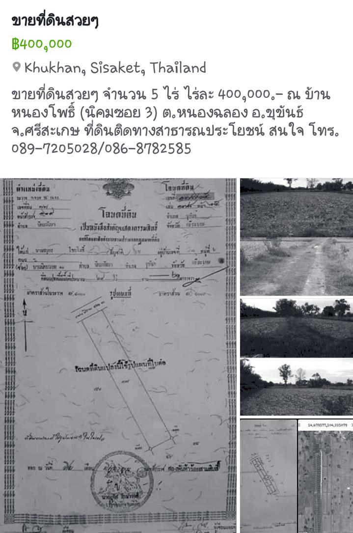 ที่ดิน ไร่ละ 400,000 บาท ศรีสะเกษ ขุขันธ์ หนองฉลอง