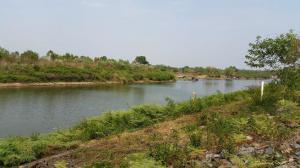 ที่ดิน 25000000 บุรีรัมย์ คูเมือง ปะเคียบ