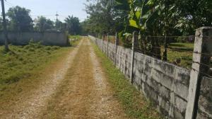 ที่ดิน 500000 นครนายก บ้านนา พิกุลออก