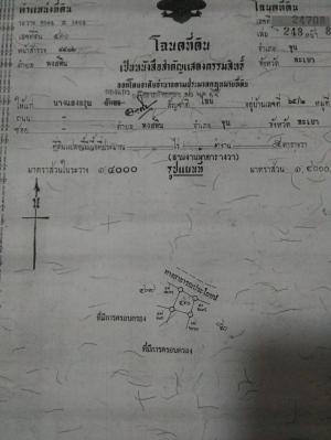 ไร่นา 150000 สุพรรณบุรี บางปลาม้า สาลี