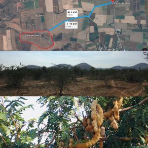 ที่ดิน 18000000 สุพรรณบุรี อู่ทอง พลับพลาไชย