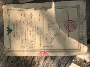 ไร่นา 1289063 เพชรบูรณ์ ชนแดน ชนแดน