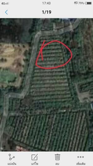 ที่ดิน 8000000 นครปฐม สามพราน หอมเกร็ด