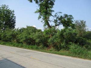 ที่ดิน 28560000 ชลบุรี เมืองชลบุรี เหมือง