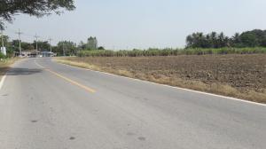 ที่ดิน 600000 กาญจนบุรี ท่ามะกา ตะคร้ำเอน