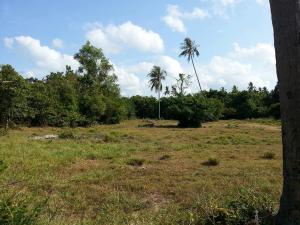 ที่ดิน 2900000 สุราษฎร์ธานี เกาะสมุย ลิปะน้อย