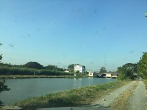 ที่ดิน 451000000 กรุงเทพมหานคร เขตลาดกระบัง คลองสองต้นนุ่น