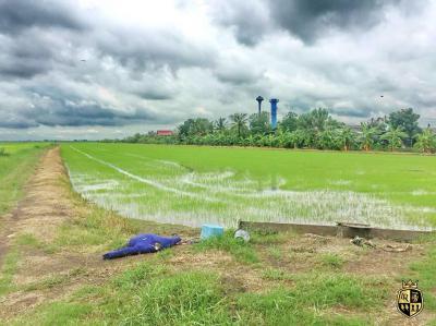 ที่ดิน 350000 ฉะเชิงเทรา บางน้ำเปรี้ยว ดอนฉิมพลี