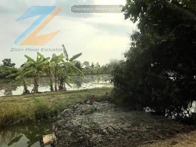 ที่ดิน 21402000 ปทุมธานี หนองเสือ บึงบา