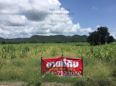 ที่ดิน 750000 กาญจนบุรี เมืองกาญจนบุรี วังด้ง