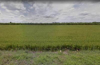 ที่ดิน 10000000 นนทบุรี ไทรน้อย หนองเพรางาย