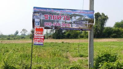 ที่ดิน 500000 ปทุมธานี ลำลูกกา คูคต