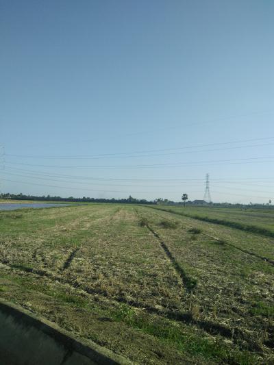ที่ดิน 2625000 กาญจนบุรี ท่ามะกา