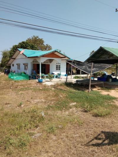 บ้านเดี่ยว 6500000 เพชรบุรี บ้านแหลม แหลมผักเบี้ย