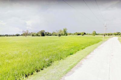 ที่ดิน 112000 ลพบุรี บ้านหมี่ ไผ่ใหญ่