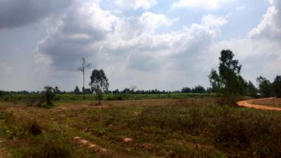 ที่ดิน 150000 เพชรบุรี ชะอำ ไร่ใหม่พัฒนา