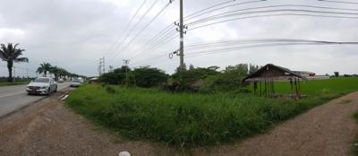 ที่ดิน 82800000 ปทุมธานี เมืองปทุมธานี บ้านฉาง