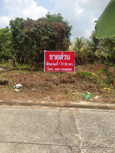 ที่ดิน 6500000 พัทลุง เมืองพัทลุง คูหาสวรรค์