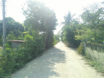 ที่ดิน 270000 กาญจนบุรี บ่อพลอย หนองรี