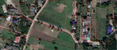 ที่ดิน 2303500 นครปฐม เมืองนครปฐม สวนป่าน