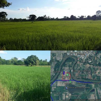 ที่ดิน 5000000 ขอนแก่น เมืองขอนแก่น โนนท่อน