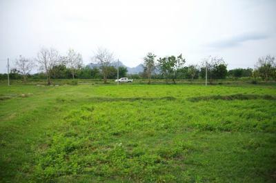 ที่ดิน 140000 ลพบุรี ชัยบาดาล นาโสม