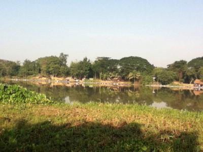 ที่ดิน 6500000 กาญจนบุรี เมืองกาญจนบุรี บ้านเหนือ