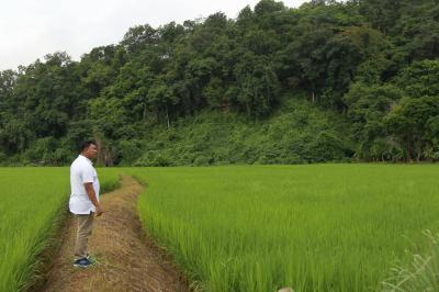 บ้านพร้อมที่ดิน 1500000 แม่ฮ่องสอน เมืองแม่ฮ่องสอน หมอกจำแป่