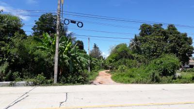 ที่ดิน 200000 ราชบุรี ปากท่อ อ่างหิน