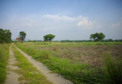 ที่ดิน 150000 ลพบุรี ชัยบาดาล ลำนารายณ์