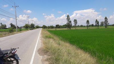 ที่ดิน 550000 กาญจนบุรี พนมทวน หนองสาหร่าย