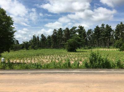 ที่ดิน 2400000 อุบลราชธานี ตระการพืชผล คำเจริญ
