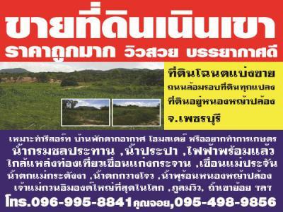 ที่ดิน 750000 เพชรบุรี หนองหญ้าปล้อง หนองหญ้าปล้อง