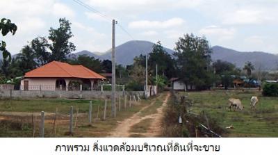 ที่ดิน 390000 เพชรบุรี ท่ายาง กลัดหลวง