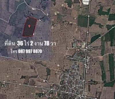 ที่ดิน 150000 กาญจนบุรี ห้วยกระเจา ดอนแสลบ
