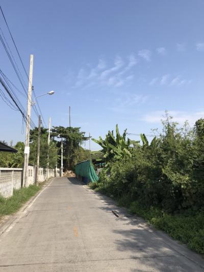 ที่ดิน 13510000 นนทบุรี เมืองนนทบุรี บางเขน