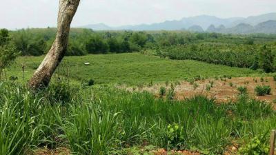 ที่ดิน 17000000 กาญจนบุรี ไทรโยค ไทรโยค
