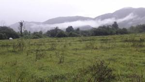 ที่ดิน 600000 เชียงใหม่ กิ่งอำเภอแม่ออน ออนกลาง