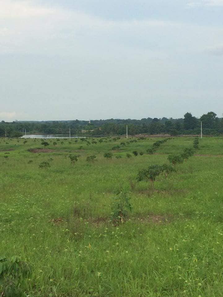 ที่ดิน 15900000 จันทบุรี สอยดาว ทับช้าง