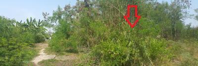 ที่ดิน 1722000 กรุงเทพมหานคร เขตหนองจอก หนองจอก
