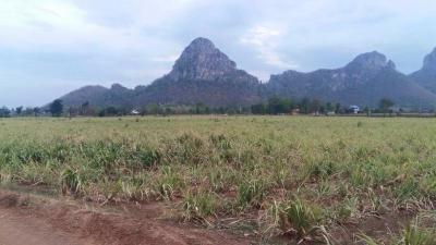 ที่ดิน 4500000 ลพบุรี เมืองลพบุรี นิคมสร้างตนเอง