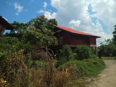 บ้านพร้อมที่ดิน 3000000 เชียงใหม่ สะเมิง สะเมิงใต้