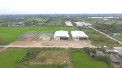 โกดัง 13800000 นนทบุรี ไทรน้อย หนองเพรางาย