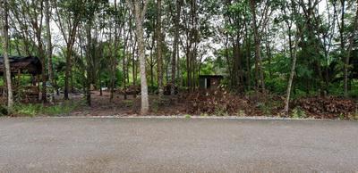 บ้านเดี่ยว 1999996 สุราษฎร์ธานี กาญจนดิษฐ์ ช้างขวา