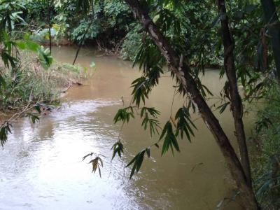 ที่ดิน 1800000 จันทบุรี กิ่งอำเภอเขาคิชฌกูฏ คลองพลู