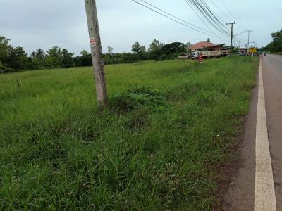 ที่ดิน 11000000 หนองคาย เมืองหนองคาย พระธาตุบังพวน
