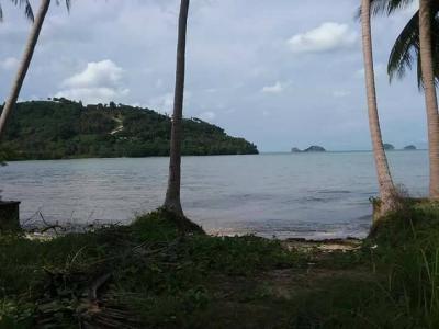 ที่ดิน 15000000 สุราษฎร์ธานี เกาะสมุย ตลิ่งงาม